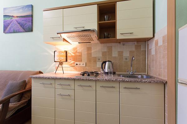 Однокомнатная квартирапосуточно в Харькове, Киевский район, ул. Пушкинская, 63