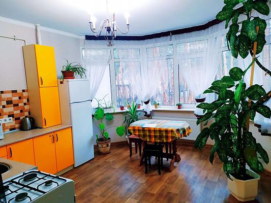 Однокомнатная квартирапосуточно в Буче, ул. Пушкинская, 2к. Фото 1