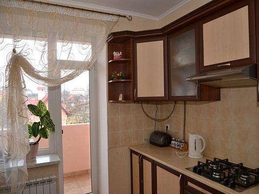 Однокомнатная квартирапосуточно в Трускавце, ул. Крушельницкой, 8. Фото 1
