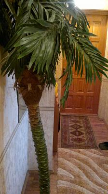 Двухкомнатная квартирапосуточно в Житомире, ул. Московская, 35. Фото 1