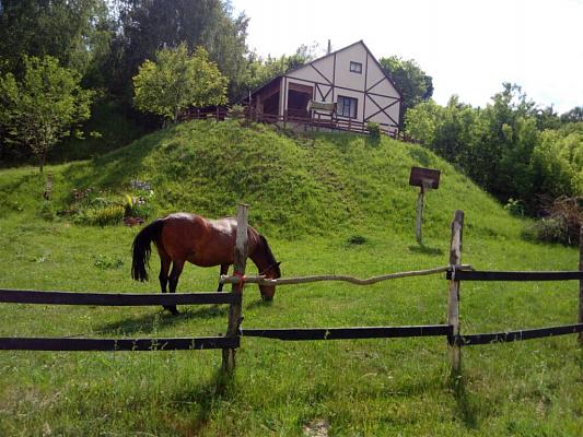 Дом посуточно в Новгород-Северском, ул. Живописная, 24а. Фото 1
